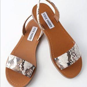 Steve Madden Alina Snake Skin Sandals